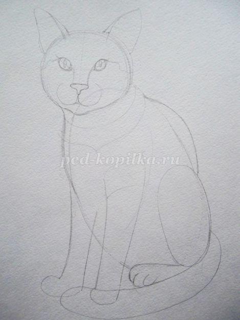 Bir yavru kedi çizmek için: kısa bir master class